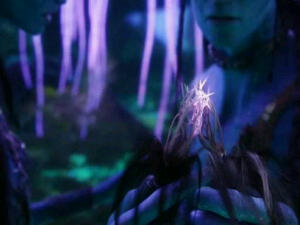 Jake and Neytiri connect using the neural queue braid or Na'vi in the movie Avatar.