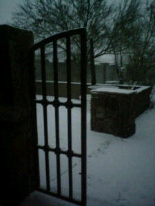 ~•Snow in my back yard on the morning of New Year's Eve (Santa Fe, New Mexico)•~