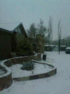 ~•Snow in my front yard on the morning of New Year's Eve (Santa Fe, New Mexico)•~