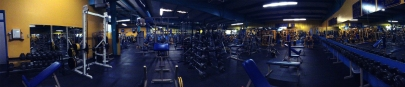 Panoramic photograph of Mandrill's Gym by Felicia Lujan